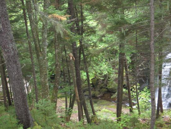 St. Martins, Canadá: The waterfall on the trail