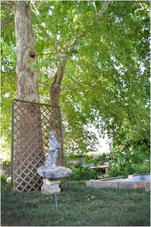 Kroondal, Sudáfrica: Garden Decor