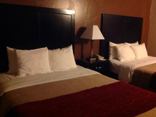 Comfort Inn Zion: Наш номер:)