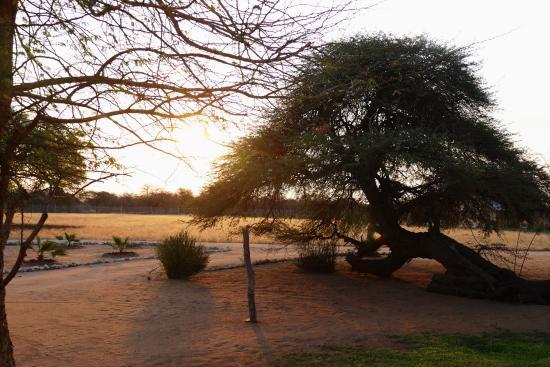 Sachsenheim Guest Farm: Der hauseigene Sonnenuntergang