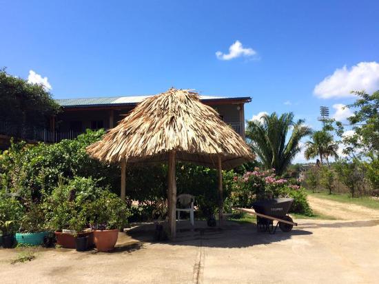 Yim Saan Hotel & Restaurant: Yard