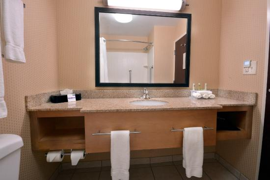 Holiday Inn Express & Suites High Point South: Spacious Bathrooms