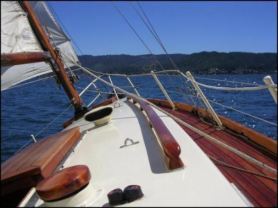 Naveguemos Cunco