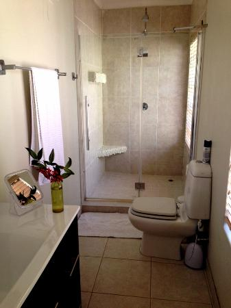 Amanzi Guest House: Apartment - Bathroom