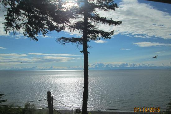 Kasilof, อลาสกา: Cook Inlet