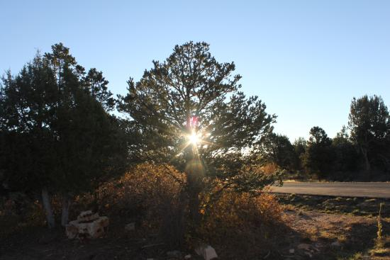 Zion Ponderosa Ranch Resort: Morning view from outside the place