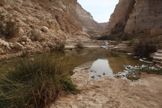 Zin River : Small pond that can be very large depending on weather and rain fall