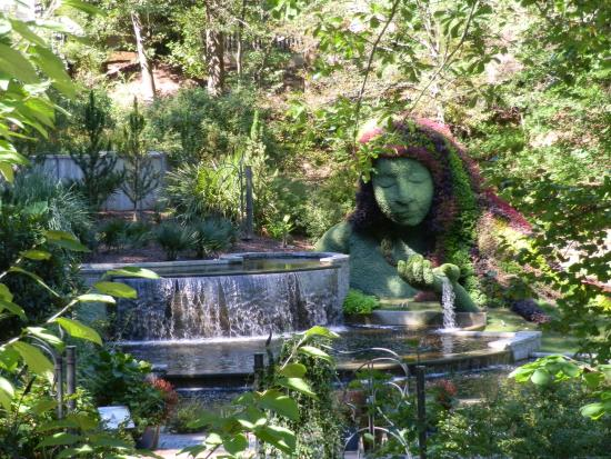 luces de navidad picture of atlanta botanical garden