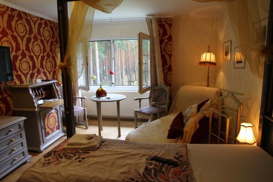 Spree-Waldhotel Cottbus : My Room