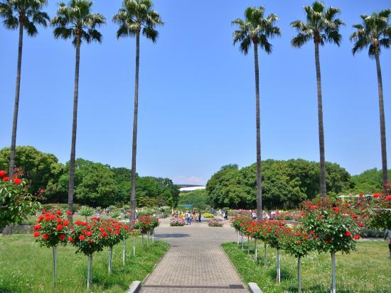 植物園 長居