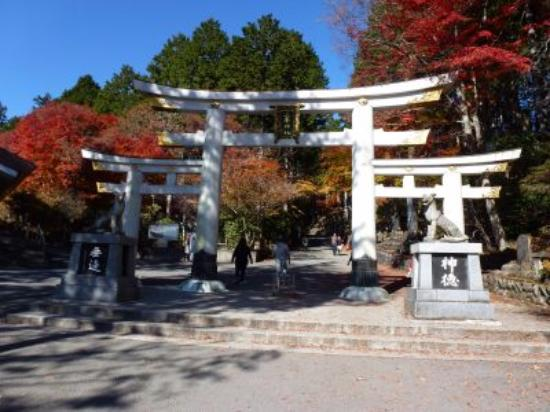 Chichibu, Japan: 鳥居