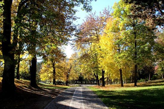 Parco della Pieve