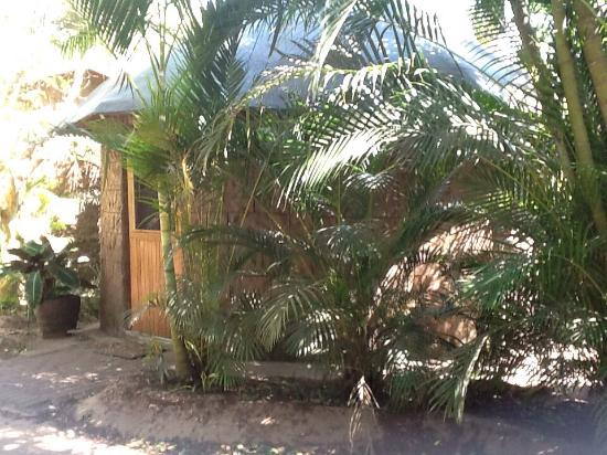 Lake St Lucia Lodge : photo0.jpg