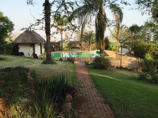Ostrich Manor : Zwembad