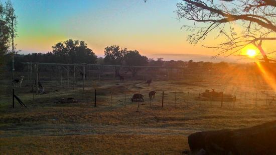 The Farm Inn: P_20150615_065943_HDR_large.jpg