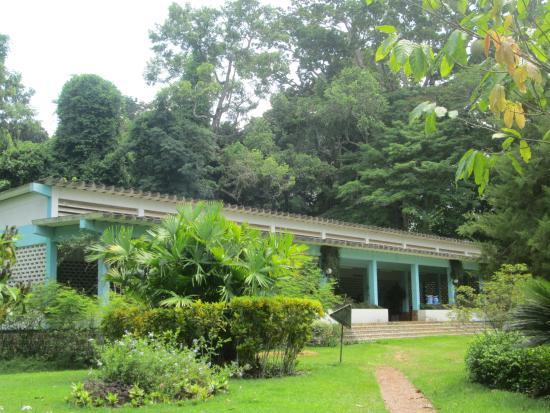 20160123 143205 photo de jardin botanique de for Restaurant jardin botanique