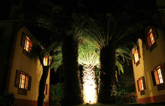 Villas Los Pajeros: Garden in the night