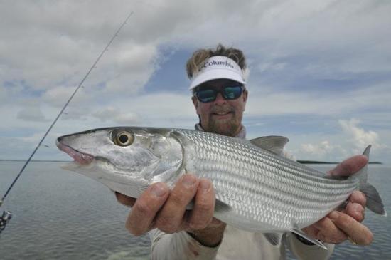Bonefish picture of key west flats fishing key west for Bone fishing key west