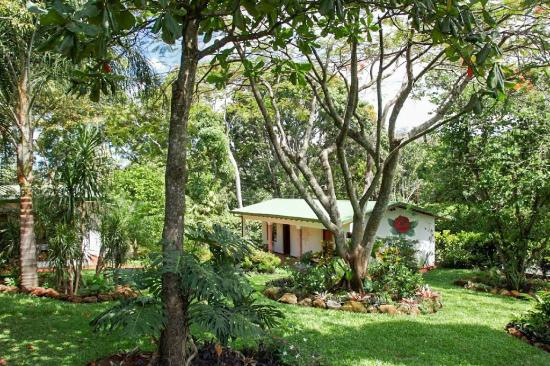 Hotel La Rosa de America : View of the garden from the center of the property