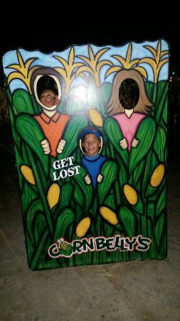 Cornbelly's Corn Maze & Pumpkin Fest