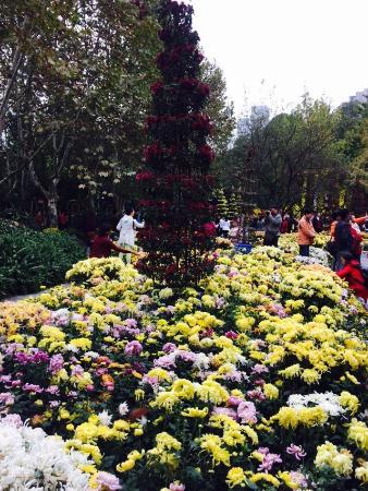 Chengdu Renmin Park : photo0.jpg