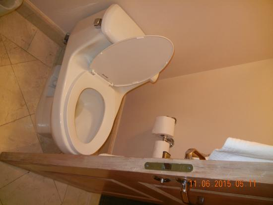 door opens on toilet - very bad design but bathroom small so no ... - Bad Design 2015