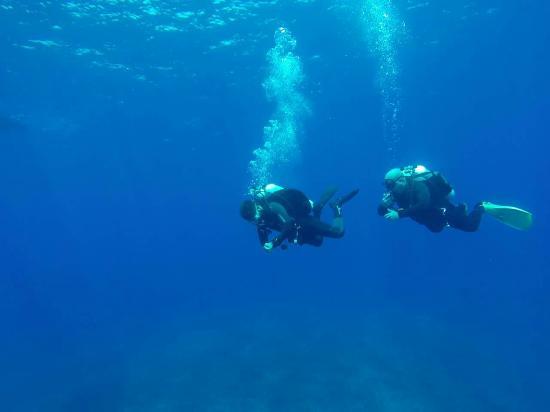 Buceo Isla Negra