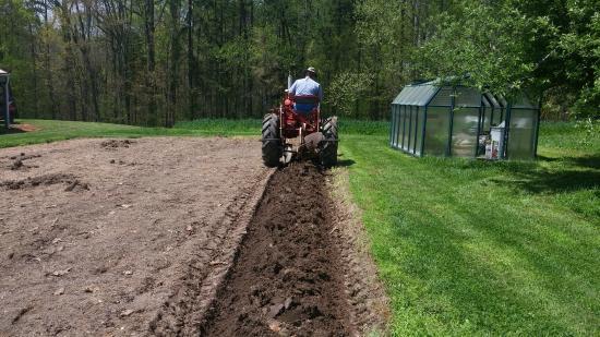 Red Oak, Вирджиния: Seasonal certified organic vegetables are grown and sold