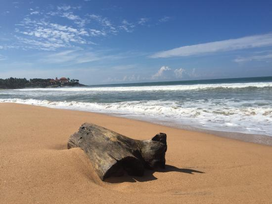 Bentota, Sri Lanka: photo2.jpg