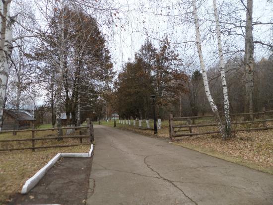 В селе Ленино-Кокушкино на территории музея прошла квест-игра