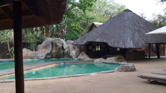 Shiduli Private Game Lodge: Pool area