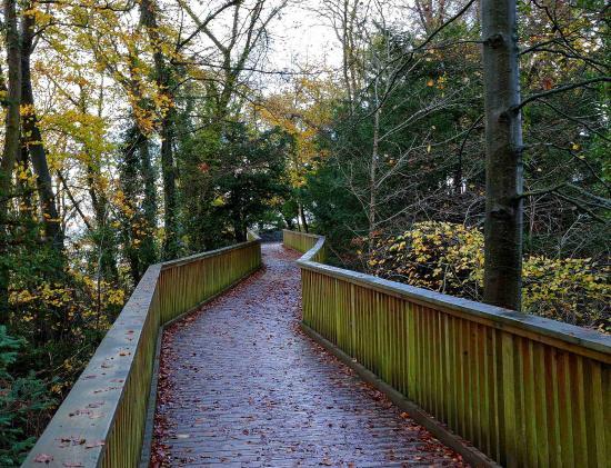 Symonds Yat West Leisure Park : The walk up