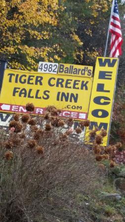 Tiger, Géorgie : 20151103_120846_large.jpg