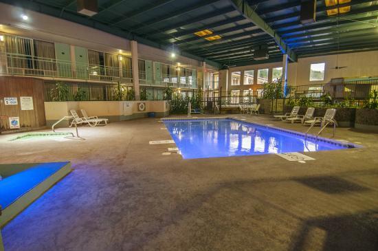 Howard Johnson Inn - Conway : Indoor Heated Pool