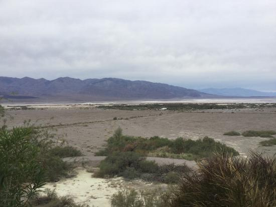 The Oasis at Death Valley: photo4.jpg