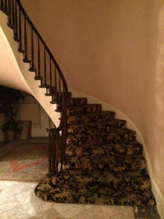 Olivier House Hotel: Stairway