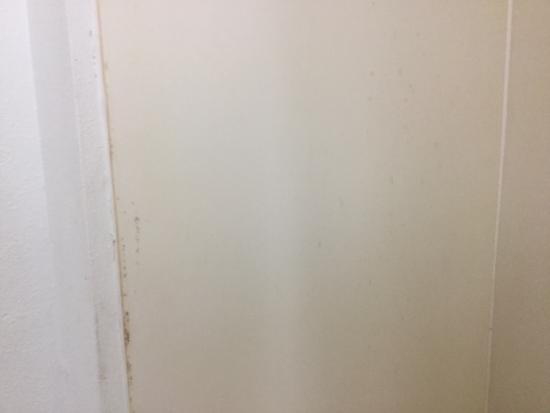 Motel 6 Richburg: Shower walls