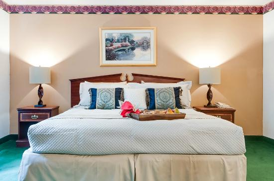 Dupont, WA: Our standard guest rooms are actually deluxe, spacious and comfortable.