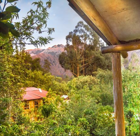 Los Perales Ecolodge: View from room