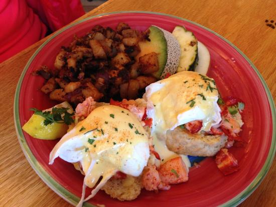 lobster eggs benedict - Picture of 2 cats, Bar Harbor - TripAdvisor