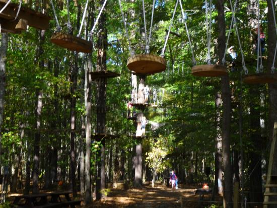 Picture Of The Adventure Park At Virginia