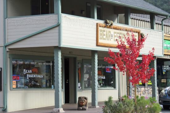 Big Bear Region, CA: Bear Essentials
