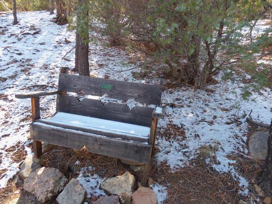 Randall Davey Audubon Center: Snowy bench in November