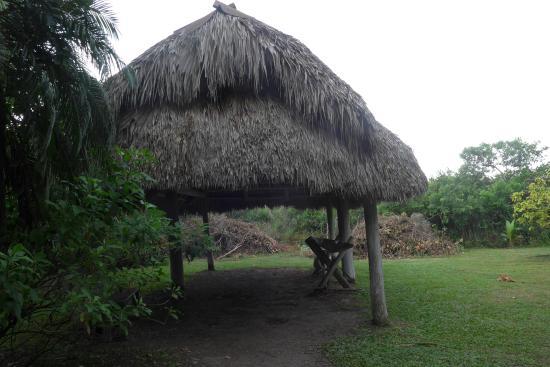 Native American Hut Picture Of Everglades Safari Park
