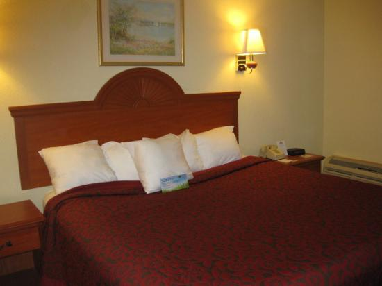 Days Inn Ocala North: Our King-Sized Bed