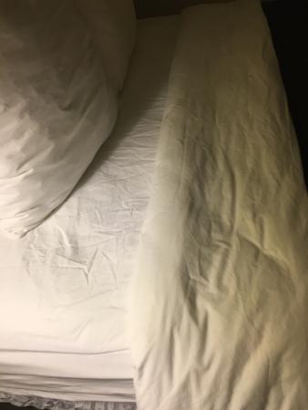Sleep Inn Airport Kansas City: Wrinkled linens