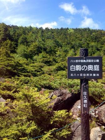 Shirakoma no Okuniwa
