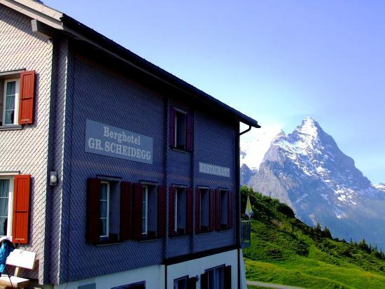 Grindelwald, Switzerland: アイガーを望む