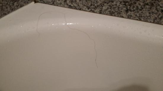Rodeway Inn : Long Hair in bathtub