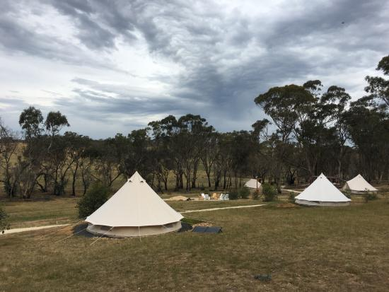 Cosy Tents The Yandoit Site & The Yandoit Site - Picture of Cosy Tents Sailors Falls - TripAdvisor